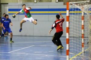 L'Handbol Berga aconsegueix sortir del descens (24-19)